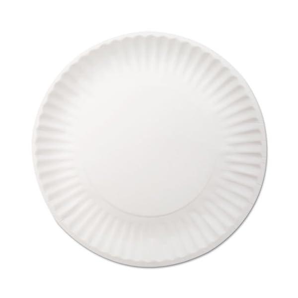 "Dixie 9/"" Paper Plates 1000//CT White 709902WNP9"