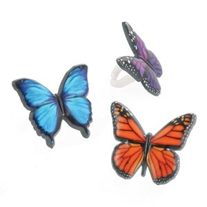 Butterfly Cupcake Rings - (24-Pack) (Butterfly Party Favors)