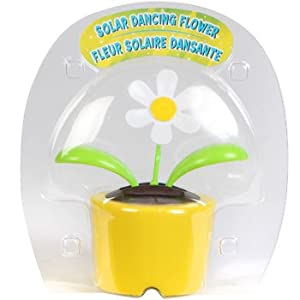 Solar Dancing Flower - Daisy (In Bubble Package - Pot Colors Vary) 35