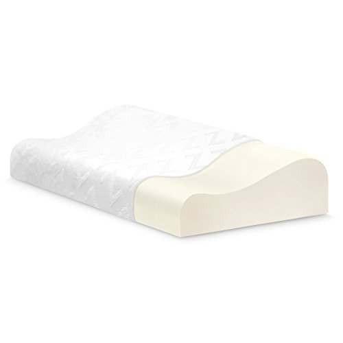 Z Memory Foam Contour Pillow - Luxurious Washable Cover - King (Pillow Foam Memory Touch)