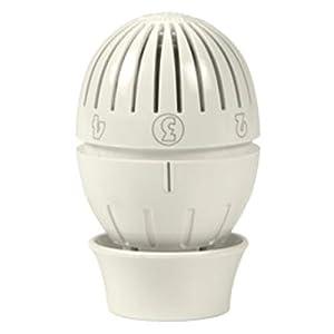 Giacomini R470Testa termostatica a liquido 31R3MYd9%2BSL. SS300