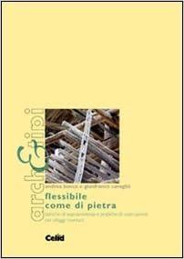 Book Flessibile come di pietra. Tattiche di sopravvivenza e pratiche di costruzione nei villaggi montani