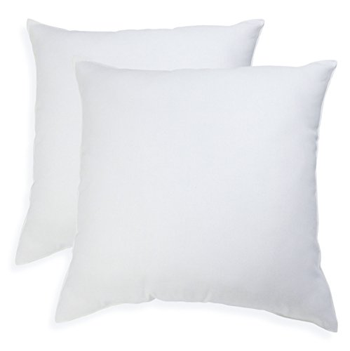 Pegasus Home Fashions EZ Dreams Euro Square Pillow, 2-Pack