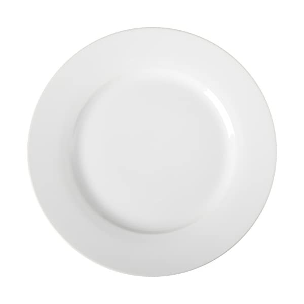 AmazonBasics 6-Piece Dinner Plate Set 31R4HQobeEL