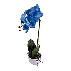 IMIEE Phaleanopsis Arrangement with Vase Decorative Artificial Orchid Flower Bonsai (Blue) 2