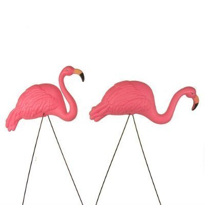 Yard Ornament (2pack) ()