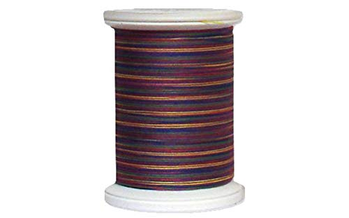 (YLI 24450-11V 3-Ply 40wt T-40 Cotton Quilting Variegated Thread, 500 yd, Primary)