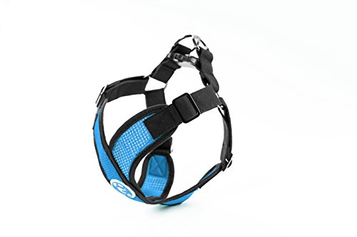 Gooby 04111-SBLU-M Choke Free X-Harness for Small Dogs, Sea Blue, Medium by Gooby (Image #1)