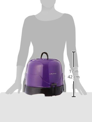 Laila Ali LADR5603 Salon Ionic Dryer, Purple and Black by Laila Ali (Image #5)