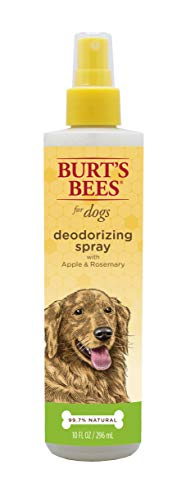 Burt's Bees All Natural Deodorizing Spray for Dogs | Best Dog Spray for Smelly Dogs | Made with Apple & Rosemary, 10 oz