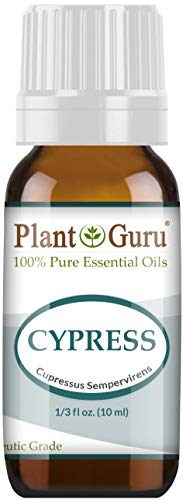 Cypress Essential Oil 10 Ml 100 Pure Undiluted Therapeutic Grade