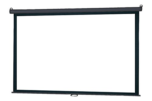 109'' Manual Pull Down Screen by InFocus