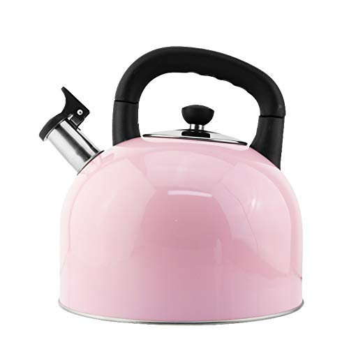 Stovetop Kettles,Thickened Stovetop Teakettle Kettle 304 Stainless Steel Large Capacity Flat Bottom Whisker Induction Cooker Gas Universal (color : Pink, Size : 4L)