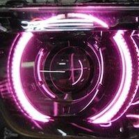 Oracle Lighting CH-CA1013F-P - Chevrolet Camaro LED Halo Fog Light Rings - Pink