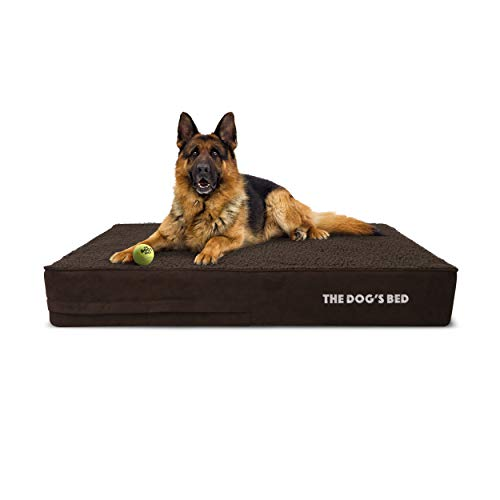 The Dog's Bed Orthopedic Dog Bed Large Brown Plush 40x25, Premium Memory Foam, Pain Relief for Arthritis, Hip & Elbow Dysplasia, Post Surgery, Lameness, Supportive, Calming, Waterproof Washable Cover from The Dog's Balls