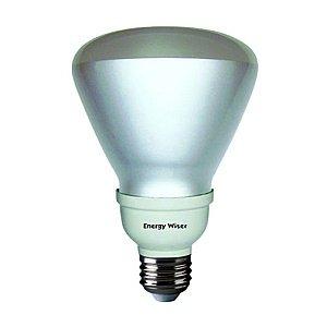 Bulbrite CF16R30CW/E 16-watt Compact Fluorescent R30 Reflector, Cool White