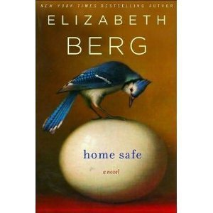 book cover of Home Safe