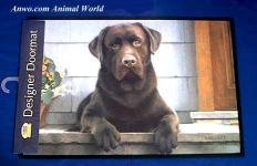 Elbow Lab Fiddlers Chocolate - Chocolate Lab Doormat Labrador Welcome Mat USA