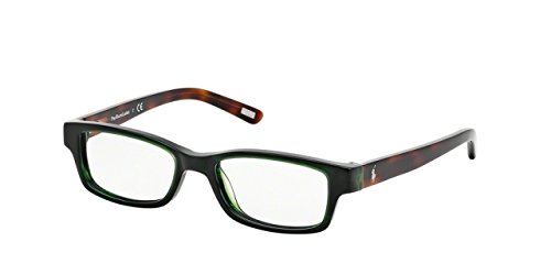 Polo PP8518 PP8518 Eyeglass Frames 899-46 - Green  Tortoise