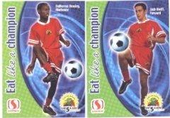 2002-safeway-usa-mls-promotional-soccer-card-set