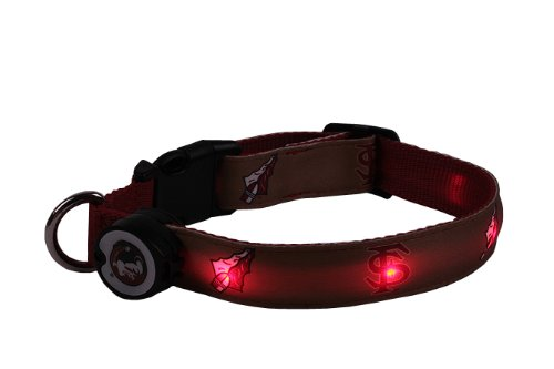 NCAA Florida State Seminoles LED Light Up Dog Collar, Large/15-20-Inch