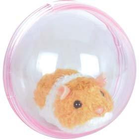 Running Hamster In A Ball 31RDQSZEK4L