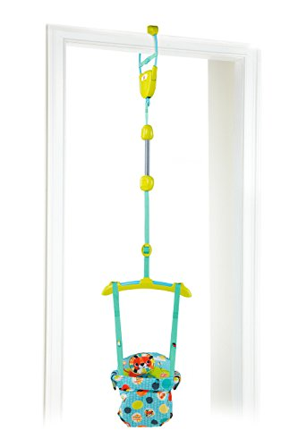 Bright Starts kaleidoscope safari door jumper
