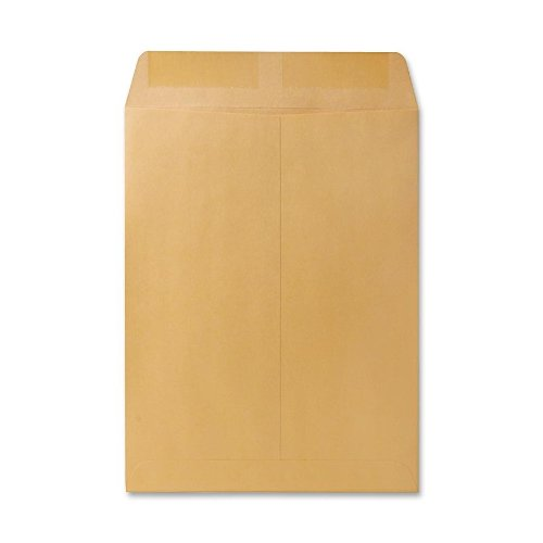 Quality Park Large Format/Catalog Envelopes, 9.5 x 12.5 inches, Brown Kraft, Box of 250 (QUA41565)