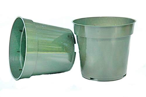 Plastic Pots for Plants, Cuttings, & Seedlings 4 Inch Standard Size 20 Pack (Plastic Plant Sale For Pots)