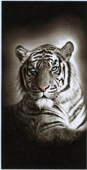 White Tiger Cat Terry Velour Beach Bath Towel
