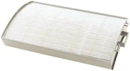 DELONGHI DAPF70 True Hepa - Filtro de Repuesto: Amazon.es: Hogar