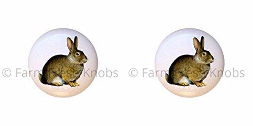 SET OF 2 KNOBS - Bunny Rabbit - Rabbits - DECORATIVE Glossy CERAMIC Cupboard Cabinet PULLS Dresser Drawer KNOBS