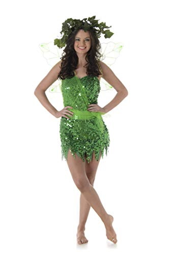 Women's Fairy Costume - for Halloween Costume Party Accessory - Extra Large