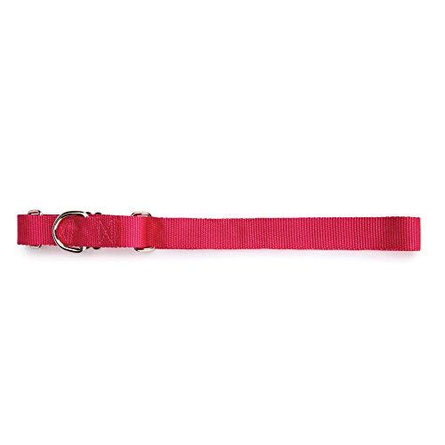 "Guardian Gear Nylon Martingale Dog Collar, Fits Necks 14"" to 20"", Raspberry"