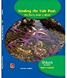 Tending the Tide Pool, Donna Loughran, 1603574948
