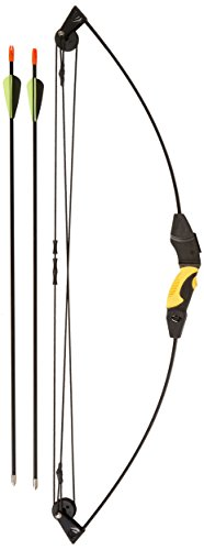 Bow Products : Barnett Outdoors Lil Banshee Jr. Compound Youth Archery Set