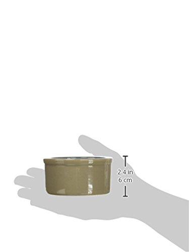 Kaytee-Stoneware-Cavy-Bowl-4-Inch