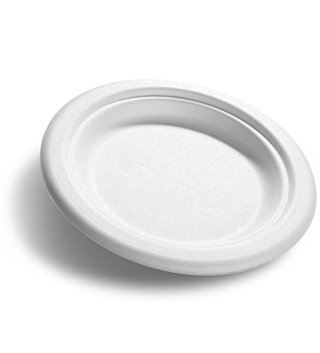 precise-portions-pp6csp-25-disposable-plates-for-portion-control-healthy-diet-desserts-all-natural-w