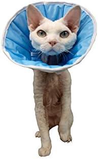 Collar de curación para perro o gato (1 S, contorno de cabeza: 20 – 24 cm), altura: 12 cm