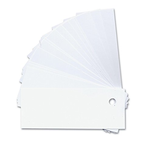 White Plastic Labeling Tags with Holes- 50-Pk - Tactile Labeling