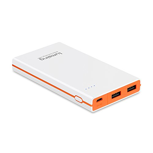 Lumsing Ultrathin Portable 2-Port USB Charger 8000mAh Premium External Battery Pack &...
