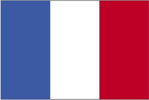 French Flag Photo - 4