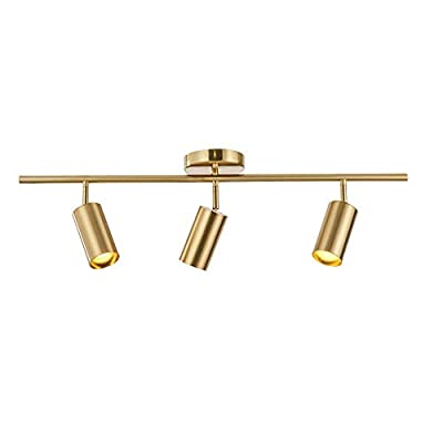 Modo Lighting Adjustable Track Lighting 3 Lights Brushed Brass Flush Mount Ceiling Light Fixture for Kitchen Dining Room