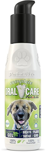 Pet Oral Gel - PetzLife Peppermint Oral Care Gel, 4-Ounce