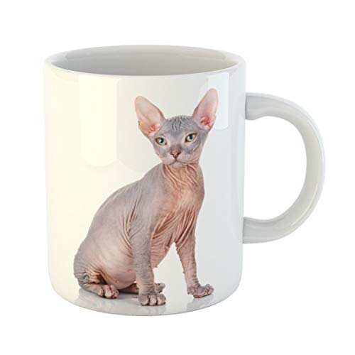 Emvency Coffee Tea Mug Gift 11 Ounces Funny Ceramic Sphynx Bald Cat of Breed Sphinx Naked Kitten Without Wool Hairless Gifts For Family Friends Coworkers Boss Mug -