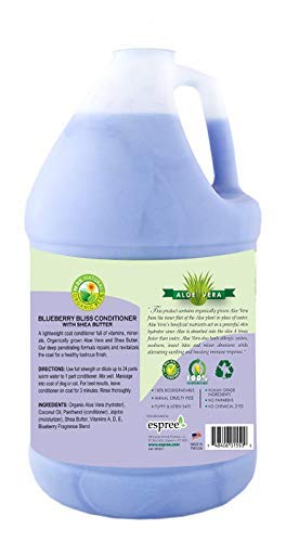 Espree Blueberry Bliss Gallon Conditioner, Pack of 2 with 1 Pump