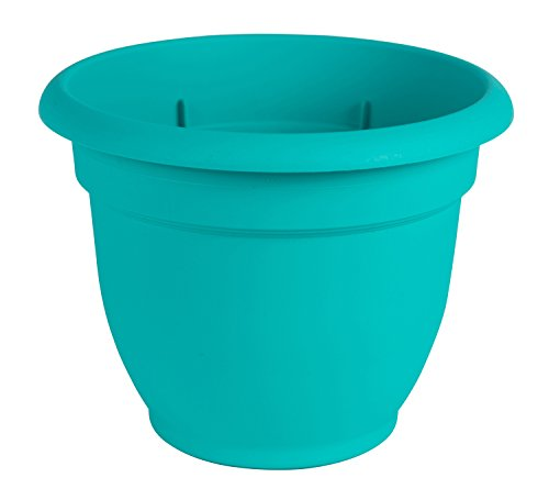 - Bloem Ariana Self Watering Planter, 6