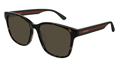 Sunglasses Gucci GG 0417 SK- 003 HAVANA/BROWN MULTICOLOR