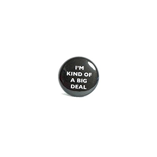 button-pin-im-kind-of-a-big-deal-funny-1-pinback-geekery-nerdy-geeky-random