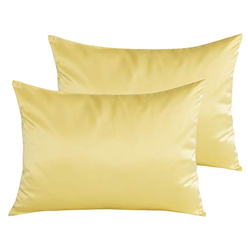 NTBAY Satin Toddler Pillowcases, Travel Pillow Covers Set of 2, Zipper Closure, Super Soft and Luxury, 13